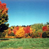 autumn greenfields