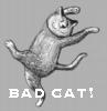 badcatwilliamj userpic