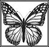 good_butterfly userpic