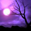 glitterdream userpic