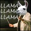 Professor Llama