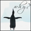 Why Me? Penguin