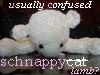 schnappycat