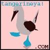 tangerineya