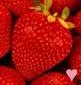 str4wberrylover userpic