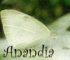 lady_anandia userpic