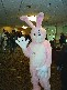 wally_wabbit userpic