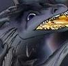 tseran userpic