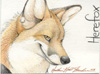 herefox userpic