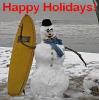 surfin' snowman