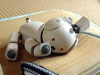 aibo, sleepy, cute