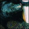 rebreathe userpic