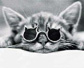 cindy_reddeer: CatSunglasses