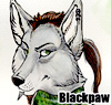 blackpaw_ userpic