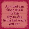 Idiot Crisis