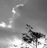 sundayrise userpic