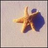 elisabet_moisio userpic