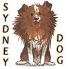 Sheri: Sydney Dog