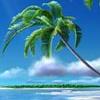Melayne Seahawk's Writer's Island [userpic]