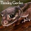amphibienne userpic