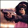 lethal chimp