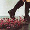 nightingalelily