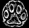 cattuns userpic