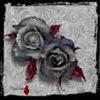 _steel_rose_ userpic