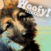 Rach the Teddog: Woofy! It's the Teddog!
