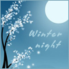 f_userpics Winter night