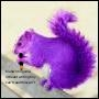 squirrelpen userpic