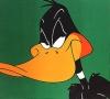 Daffy Duck Normal