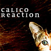 Calico Reaction: Blitz