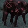 wolfscanswim userpic