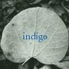indigo_moon userpic