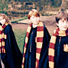 hp : young trio