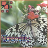 sirenslily userpic