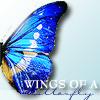 Wings Of A Butterfly © littlepixii