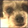 michou userpic