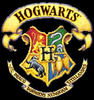 Hogwarts Staffroom