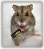 radio_mouse userpic