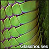 glasshouses userpic