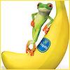 life is banana