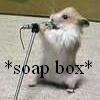soap box!