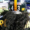 polamalu-hair