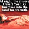 elanivalae: Desert Yoshiki