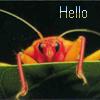 rattgirl userpic