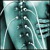 iplastic_cyborg userpic