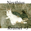 neythius userpic