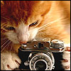 Rioky: foto